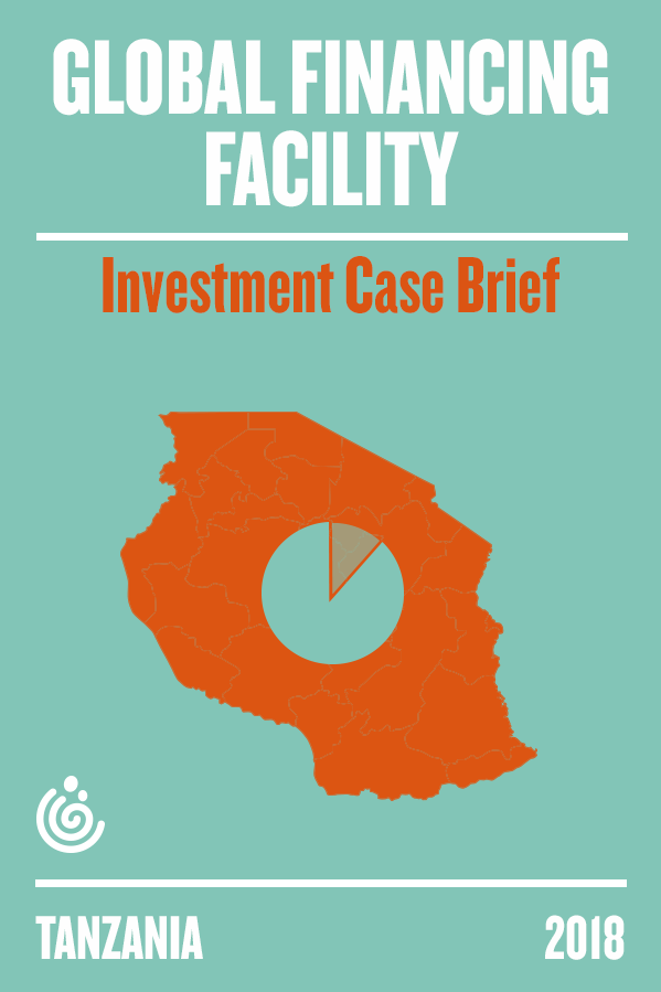 The GFF Tanzania Investment case brief